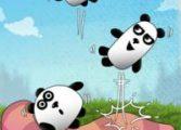 3 панды 7