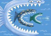 Рыбка ест рыбку и растет