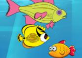 Рыбки