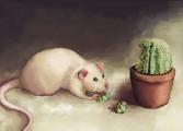 Симулятор крысы